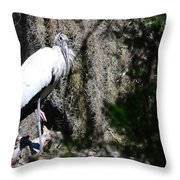 Wood Stork And Moss Throw Pillow