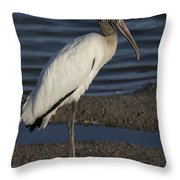 Wood Stork In The Final Light Of Day Throw Pillow