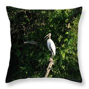 Wood Stork-out On A Limb Throw Pillow