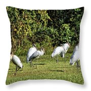 Wood Storks 2 - There Is Always One In A Crowd Throw Pillow