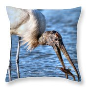 Wood Storks Breakfast Lunch And Dinner Throw Pillow