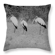 Wood Storks By The Water's Edge Throw Pillow