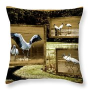 Wood Storks Of Oak Grove Island Throw Pillow