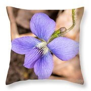 Wood Violet - Full View Throw Pillow