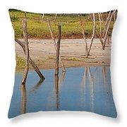 Wood Walk Throw Pillow
