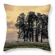 Woodburn Oregon - Sky Lights Throw Pillow