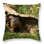 Woodchuck Ready For Spring Throw Pillow