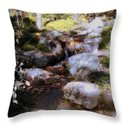 Wooded Blue Brook Throw Pillow