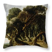 Wooded Landscape Throw Pillow