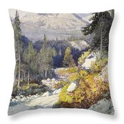Wooded Landscape With A Path And A Mountain Beyond Throw Pillow