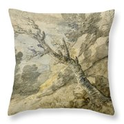 Wooded Landscape With Rocks And Tree Stump Throw Pillow