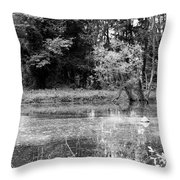 Wooded Pond Throw Pillow