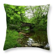 Wooded Valley Of The Patapsco River North Branch Maryland Throw Pillow