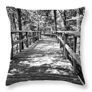 Wooden Boardwalk B Throw Pillow