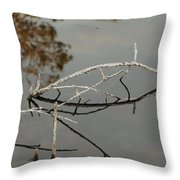 Wooden Bridge In Color Throw Pillow