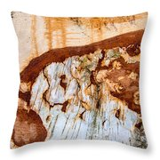Wooden Landscape - Natural Abstract Structure Throw Pillow