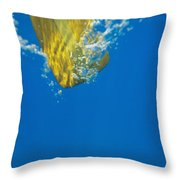 Wooden Paddle Underwater Throw Pillow