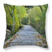 Wooden Path Throw Pillow