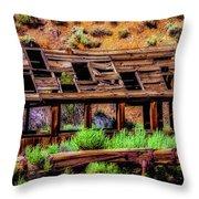 Wooden Shack Throw Pillow