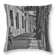 Wooden Walkway Throw Pillow