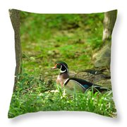 Woodies Feeding Throw Pillow