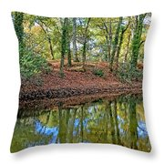 Woodland Canal 2 Throw Pillow