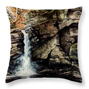 Woodland Falls Throw Pillow