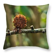 Woodland Pine Cones Throw Pillow