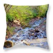 Woodland Stream And Waterfall, Hickory Run, Pocono Mountains Throw Pillow