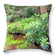 Woodland Stream Forest Interior Throw Pillow