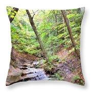 Woodland Stream Throw Pillow