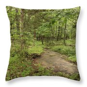 Woodland Strem Throw Pillow