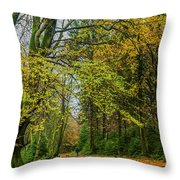 Woodland Walks #1 Throw Pillow
