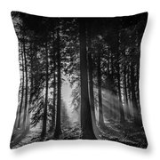 Woodland Walks Silver Rays B/w Throw Pillow