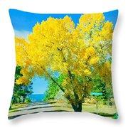 Woodmoor Throw Pillow
