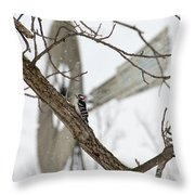 Woodpecker And Windmill Throw Pillow