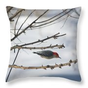 Woodpecker Diver Throw Pillow