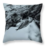 Woodpecker - El Salvador Throw Pillow