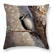 Woodpecker Feb 2011 Throw Pillow