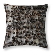 Woodpecker Holes In The Apple Tree Throw Pillow