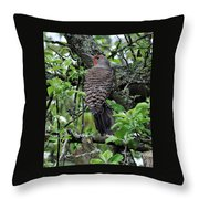 Woodpecker In The Apple Tree Throw Pillow