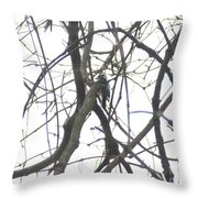 Woodpecker In The Forest Throw Pillow