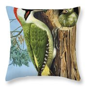 Woodpecker Throw Pillow by RB Davis