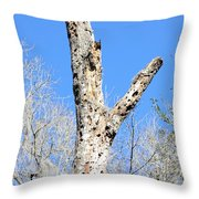 Woodpecker Was Here Throw Pillow