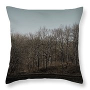 Woods Among The Trees Throw Pillow