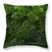 Woods And Stream Throw Pillow