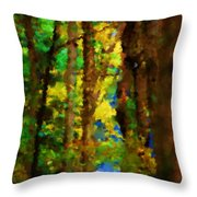 Woods Approach To Lake Throw Pillow