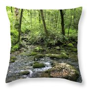 Woods - Creek Throw Pillow