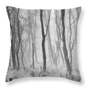 Woods In Mist, Stagshaw Common Throw Pillow