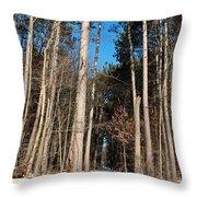Woods In Winter Throw Pillow